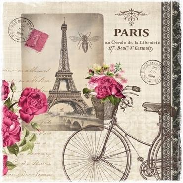 20 Servetten Paris