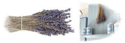 Bosje Gedroogde Ruikende Lavendel, 30-35 Cm.